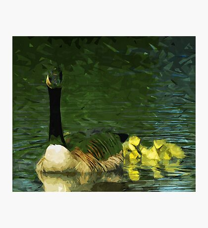 Canada Goose and Goslings Abstract Impressionism Photographic Print