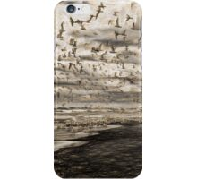 Flock of Birds iPhone Case/Skin