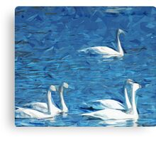 Flock of Trumpeter Swans Abstract Impressionism Canvas Print