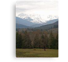 Mt Baker Canvas Print