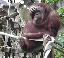 Funny Poster of an Orangutang With a Headache by Greenbaby