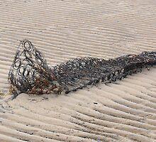 Carcass by Wrigglefish