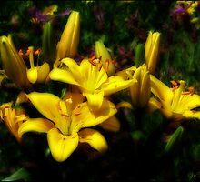 Liliums 'n' lavender by Mary Trebilco