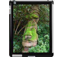 Totem  iPad Case/Skin