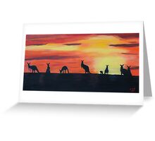 Roos on the horizon Greeting Card