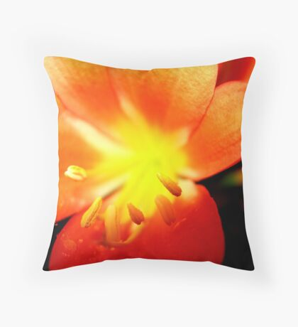 Colour Burst Throw Pillow