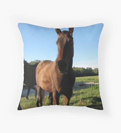 Hi Horsey Throw Pillow