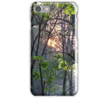 Sunsetting Behind Pretty Trees iPhone Case/Skin