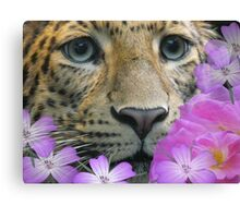 my leopard  looking a bit happier Canvas Print