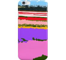 Colourful Vista (detail) iPhone Case/Skin