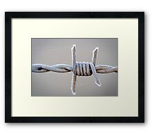 Barbed Wire Frost Framed Print