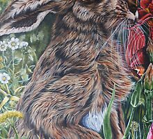 hare now gone tomorrow by dnlddean