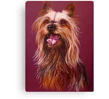 """""""Trouble"""" A Portrait Of A Yorkshire Terrier Canvas Print"""