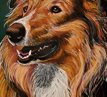 """My Best Friend"" A Portrait of A Collie Sheepdog by Susan Bergstrom"