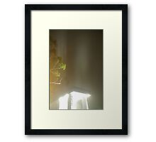 One Night At The Lab Framed Print