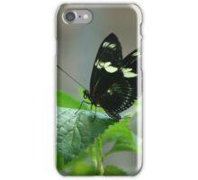 Pretty Little Black Butterfly iPhone Case/Skin
