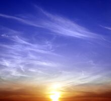 Gleeful Sky by Harsh Mangal