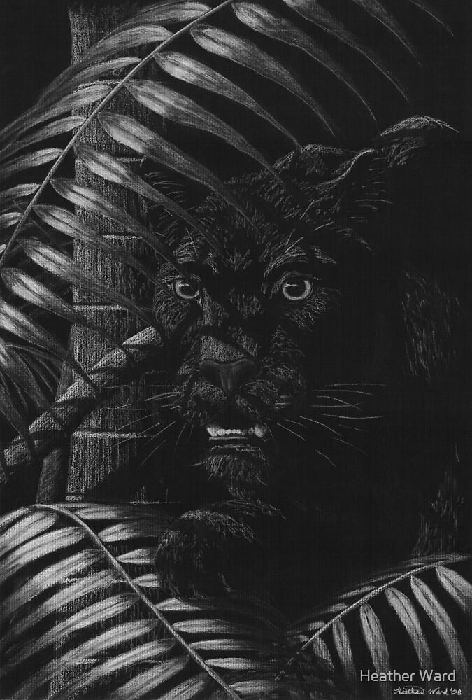 Nightstalker - Black Leopard by Heather Ward