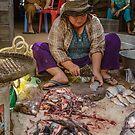 Fishmonger 2 by Werner Padarin