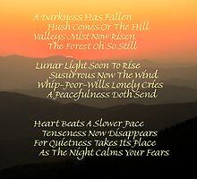 Darkness Has Fallen by Gary L   Suddath