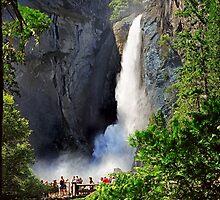 Lower Yosemite Falls by David Lampkins