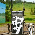 Cow Petrol :) by Penny Smith