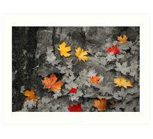 Black and White Leaves #3 Art Print