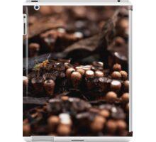 An Ant Amongst the Mushrooms iPad Case/Skin