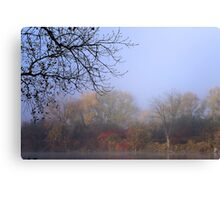 Endless Colors of Fall Canvas Print