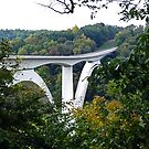 Birdsong Hollow Double Arch Bridge - Williamson County, Tennessee by Rebel Kreklow