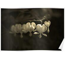 Charm Bracelet Poster