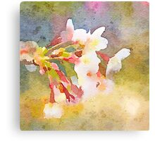 White Cherry Blossoms Digital Watercolor Painting 1 Canvas Print