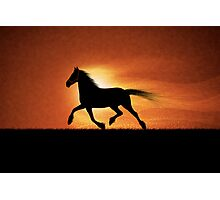The Running Horse Photographic Print