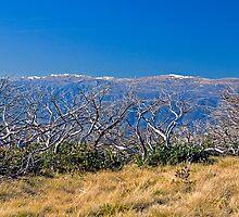 Snowy Peaks by Richard  Windeyer