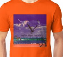 Perfect Flight In Color Unisex T-Shirt