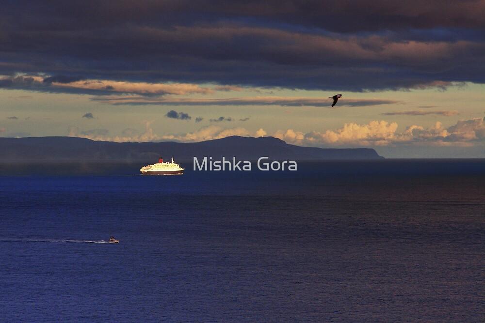 Farewell to the QEII by Mishka Gora