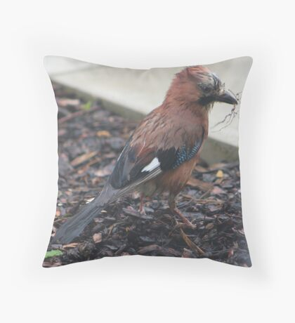 Jay nest building Throw Pillow
