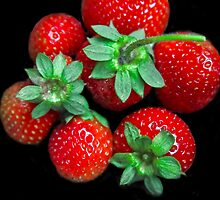 A Few Berries For You! by heatherfriedman