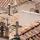 Obidos rooftops by Craig Baron