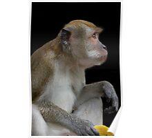 The Banana Thief Poster