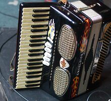 Accordion at the ready by TimChuma