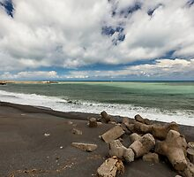 Pacific Coast by SunriseDawn