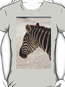 zebra at the zoo T-Shirt