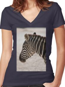 zebra at the zoo Women's Fitted V-Neck T-Shirt