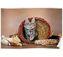 Kitty Cornucopia Poster