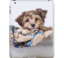 Cozy YorkiePoo  iPad Case/Skin