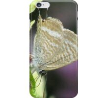 Long-tailed Pea Blue Butterfly iPhone Case/Skin