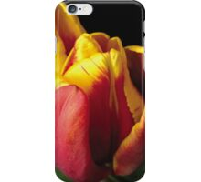 Tulip Red and Yellow iPhone Case/Skin