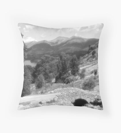 lakeland bridge Throw Pillow
