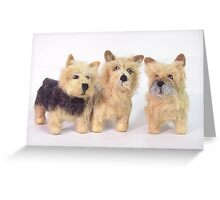 Cairn Terrier Trio Greeting Card